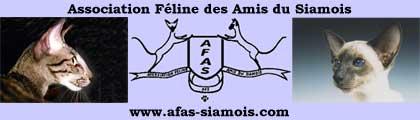 Association Feline des Amis du Siamous  -  AFAS Ассоциация Любителей Сиамских Кошек